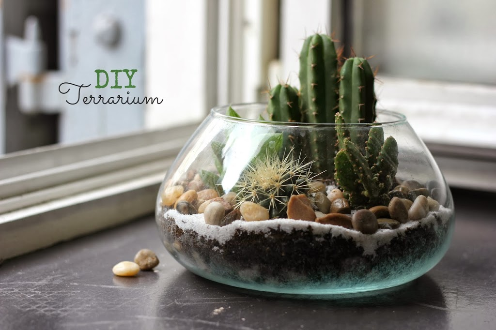 diy terrarium un jardin d 39 int rieur oh lovely place. Black Bedroom Furniture Sets. Home Design Ideas